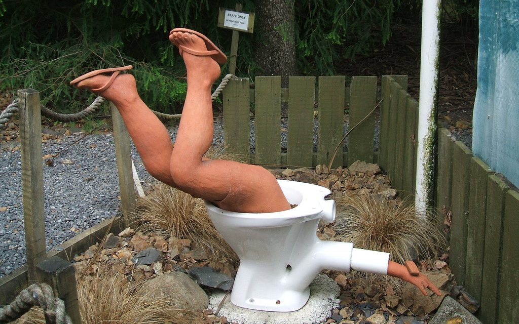 Property Coverage for Toilet Overflows