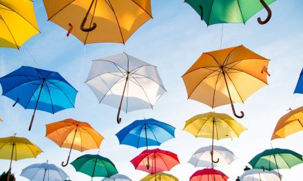 Who Needs an Umbrella Policy?