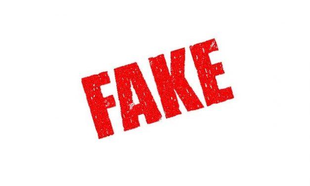 Fake Risk Management